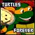 Nostalgia Factor [Turtles Forever Movie]